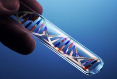 Extracción de ADN en sangre